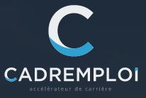 The Network - Cadremploilogo