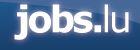 The Network - Jobs.lulogo