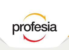 The Network - Profesialogo