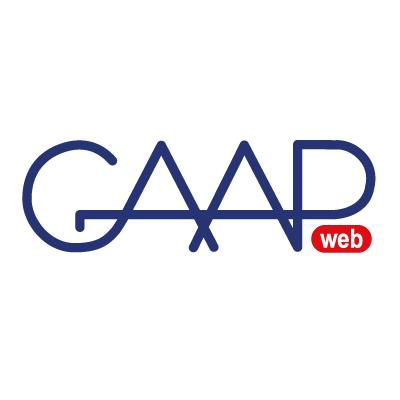 GAAPWeb Premium logo